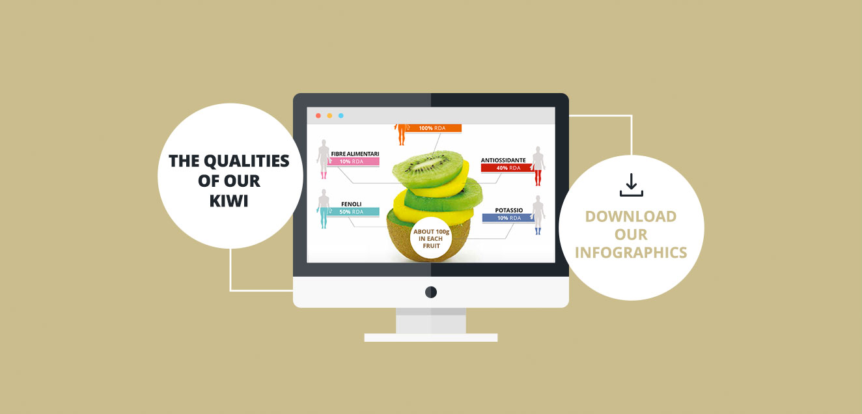 Infografica kiwi