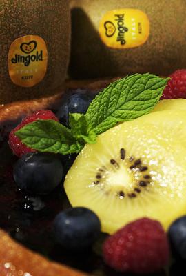 Kiwi-Cheesecake